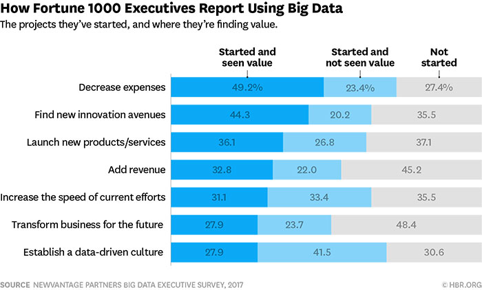 how fortune 1000 executives report using big data